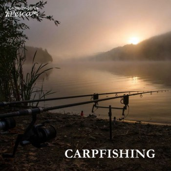 Categoria CARPFISHING