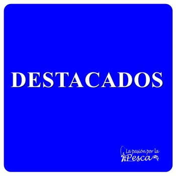 Categoria DESTACADOS
